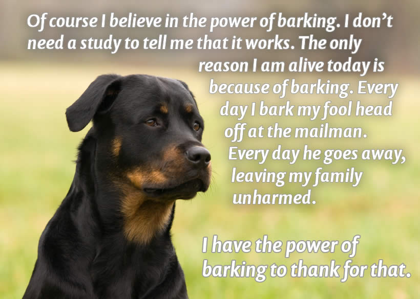 "A picture of a handsome, serious-looking rottweiler, with the caption: ""Of course I believe in the power of barking. I don't need a study to tell me that it works. The only reason I am alive today is because of barking. Every day I bark my fool head off at the mailman. Every day he goes away, leaving my family unharmed."
